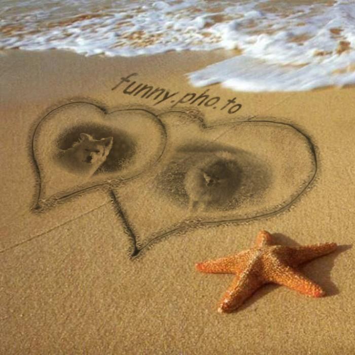 C_l_beach