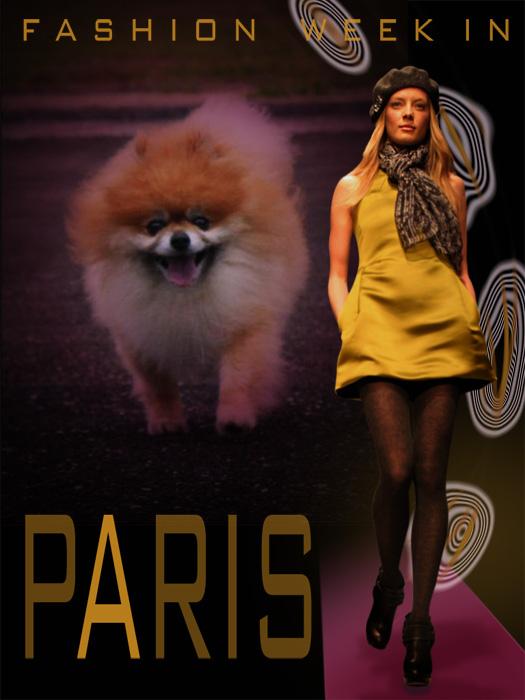 C_paris